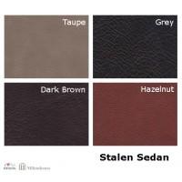 Leder_stalen_sedan